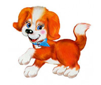Професійна програма для управління та контролю у ветеринарній клініці, ветлікарні, притулку для тварин, зоопарках